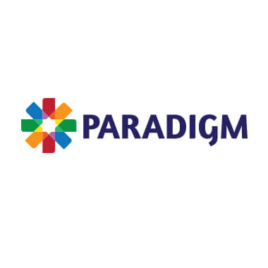paradigm colorful logo design