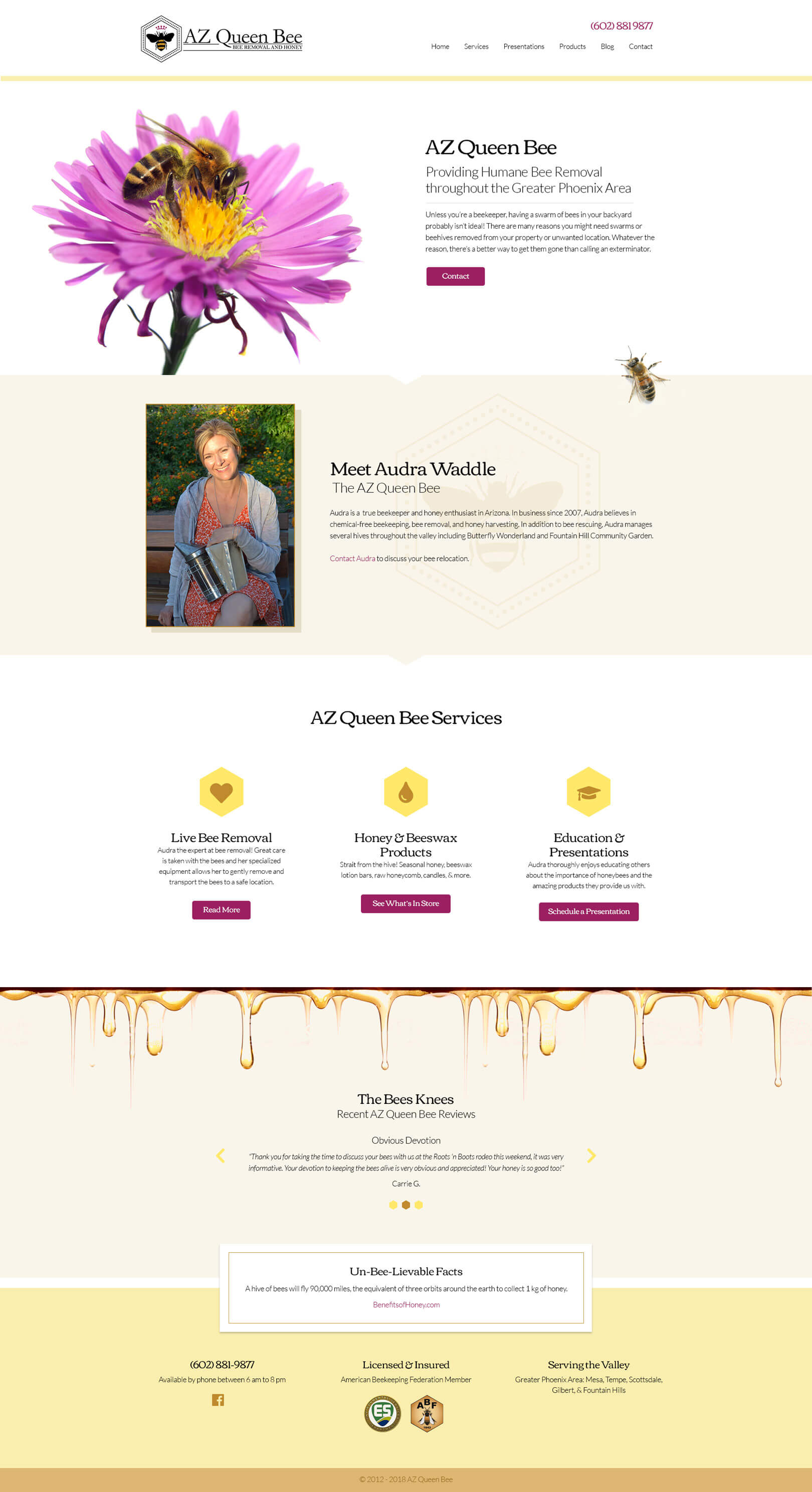 bee removal website concept
